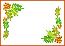 Clipart with fruits and leaves Royalty Free Stock Image