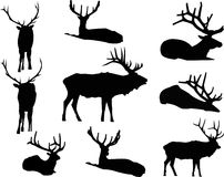 Clipart (images graphiques) animal de silhouette d'élans Image libre de droits