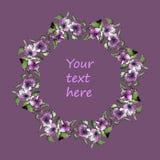Clipart (images graphiques) floral de vecteur de guirlande d'aquarelle Photo stock