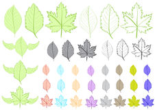 Clipart with leaves Stock Photos