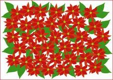 Clipart med julstjärnor Arkivbilder