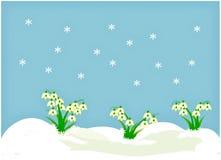 Clipart med snödroppar Royaltyfria Foton