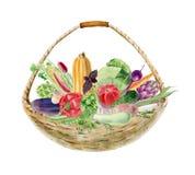 Clipart pintado a mano de la acuarela con las verduras frescas en cesta Imagen de archivo