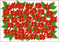 Clipart with poinsettias Stock Images