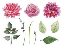 Clipart retro do vetor das flores Imagens de Stock