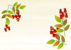 Clipart with rose berries Royalty Free Stock Photos