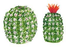 Clipart ustawiający z round zieleni kaktusami, ręka rysująca akwareli ilustracja odizolowywająca na bielu ilustracji