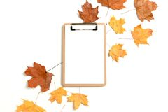 Clipboard mockup with dry maple leaves