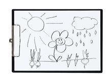 Clipboard and paper sheet with pencil drawing rain, vegetables, nature, garden, object Stock Photography