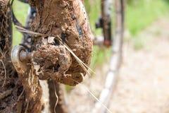 Clipless skor för mountainbike royaltyfri fotografi