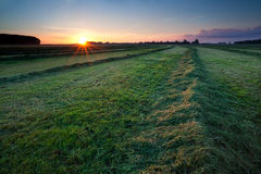 Clipped hay on field at sunrise Stock Images