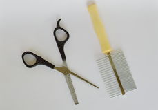 Clippers dog grooming  and comb on white background Stock Photo