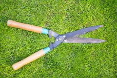 Clippers on the green grass Stock Image
