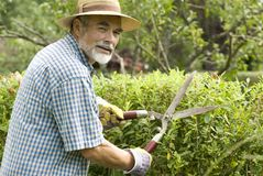 Clipping a hedge Stock Images