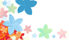 (with clipping path)  colourful tropical flowers with su Royalty Free Stock Images