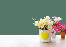 (With clipping path) Isolated beautiful white flower plumeria Stock Photography