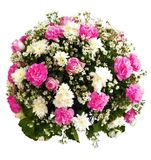 Clipping paths bouquet,rose,carnation and margarite for decorative Royalty Free Stock Image