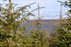 Clocaenog Windfarm και Llyn Brenig στοκ εικόνα με δικαίωμα ελεύθερης χρήσης