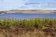Clocaenog Windfarm και Llyn Brenig στοκ φωτογραφία