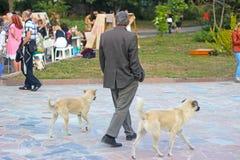 Clochard z psim chodzącym pobliskim parkiem na ulicie Fotografia Stock