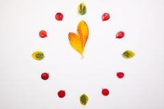Clock of autumn leafs Stock Image