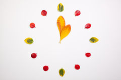 Clock of autumn leafs Royalty Free Stock Photography