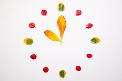 Clock of autumn leafs Stock Photography