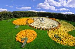 clock blomman geneva Fotografering för Bildbyråer