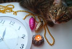 The clock and the cat with Christmas toys. Royalty Free Stock Photos