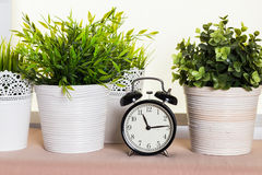 Clock close up Royalty Free Stock Images
