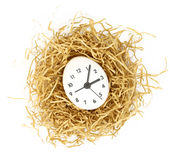 Clock dial on white egg Royalty Free Stock Photography