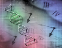 Clock and DNA Stock Photography