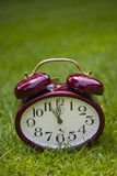 Clock on a grass Stock Photography