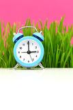 Clock with grass Royalty Free Stock Photos
