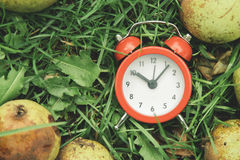 Clock in the grass Stock Photography