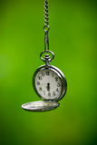 Clock on green background Stock Photography
