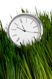 Clock and green grass Royalty Free Stock Image