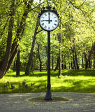 Clock in green park Royalty Free Stock Photos