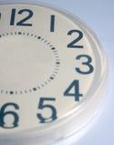 clock hälften Royaltyfri Fotografi