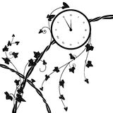 Clock and ivy. Vector illustration with clock and ivy in black and white Royalty Free Stock Image
