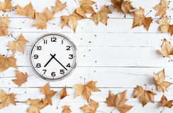 Clock and leaves on a white plank Stock Image