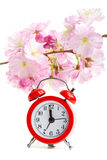 Clock and sakura flowers, on white Stock Photo