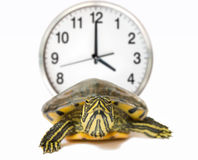 The clock is ticking against Stock Photo