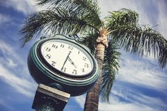 Free Clock Tower And Palm Tree Royalty Free Stock Photography - 159485677