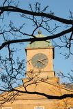 Clock tower and branches. Clock tower with green dome and weather-vane on top of one of the buildings of the University of Toronto, Canada. Black bare tree Stock Images