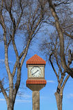 Clock Tower. Framed by trees against a blue sky Royalty Free Stock Photo