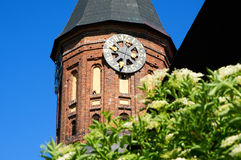 Clock in the tower of Kant's cathedral Royalty Free Stock Images