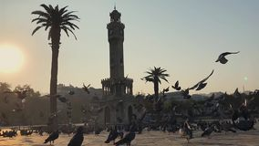 Clock tower at Konak Square Izmir Turkey with pigeons flying slow motion footage. stock video