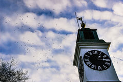 Clock Tower. On Petrovaradin Fortress, Novi Sad Stock Photography
