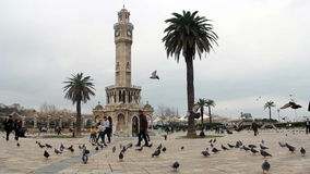 Clock tower, Piegons, fly,walking,izmir city,turkey stock video